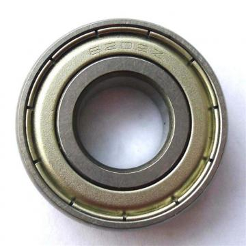 BEARINGS LIMITED SS6002 ZZC3 FM102  Single Row Ball Bearings