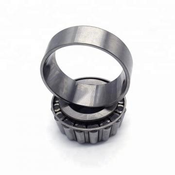 Toyana NUP29/900 cylindrical roller bearings